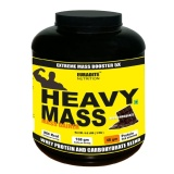 Euradite Nutrition Heavy Mass Gainer,  Chocolate  6.6 Lb