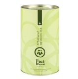 True Elements Spearmint Infusion Tea,  Natural  100 G