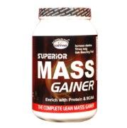 GDYNS Superior Mass Gainer,  1.1 lb  Choco