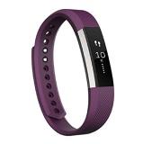 Fitbit Alta Fitness Tracker,  Small (Silver/Plum)