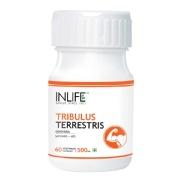INLIFE Tribulus Terrestris,  60 capsules