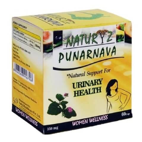 Naturyz Punarnava,  60 capsules
