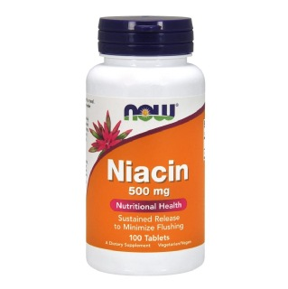 Now Niacin (500 mg),  Unflavoured  100 capsules