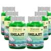 Morpheme Remedies Shilajit (500 mg),  6 Piece(s)/Pack