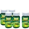 Zindagi Moringa Oleifera (Buy 4 Get 1 Free),  60 capsules