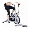 Deemark Air Bike Platinum Dx with Twister
