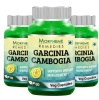 Morpheme Remedies Garcinia (500 mg),  3 Piece(s)/Pack