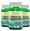 Morpheme Remedies Tribulus Terrestris (500 mg) Pack of 3,  60 capsules